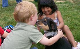 Dogs & Children